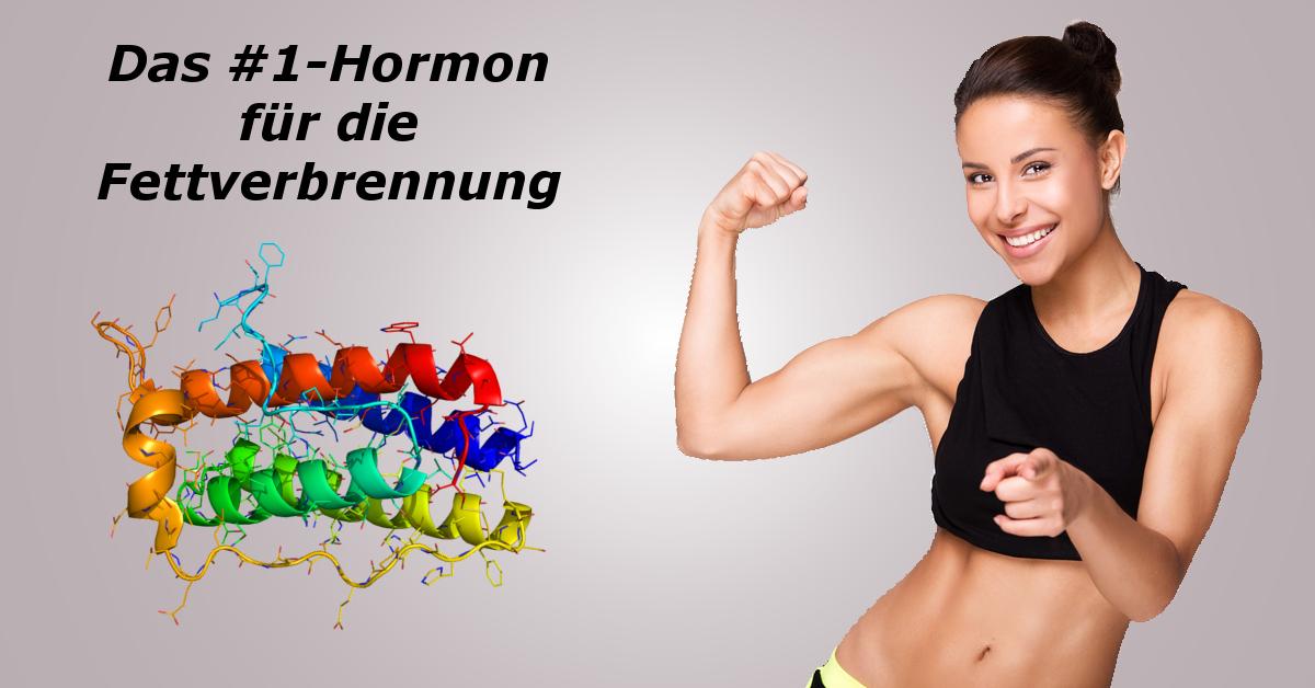 hormon-fettverbrennung-frauen
